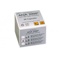 ANA 2000 Nº 1
